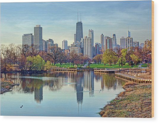 Chicago From Lincoln Park Wood Print
