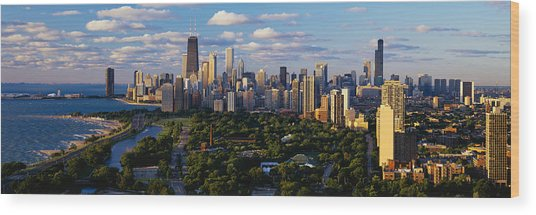 Chicago Il Wood Print