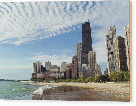 Chicago Lakefront Skyline Wood Print