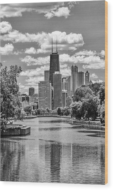 Chicago Lincoln Park Lagoon Black And White Wood Print