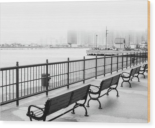 Chicago Navy Pier Wood Print