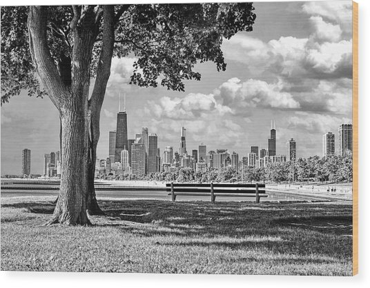 Chicago North Skyline Park Black And White Wood Print