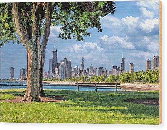 Chicago North Skyline Park Wood Print