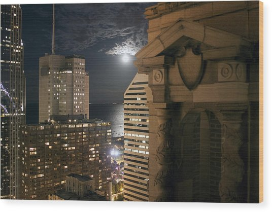 Chicago Rooftop On Moonlit Night Wood Print by Christopher Purcell