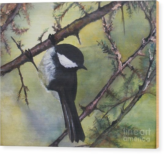 Chickadee Autumn Wood Print by Sibby S