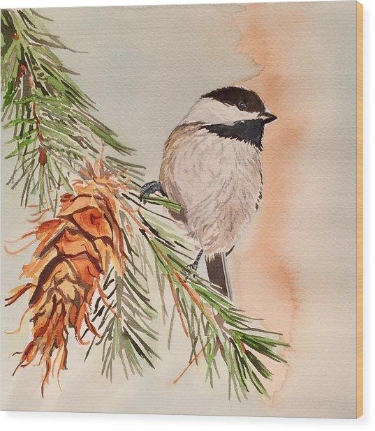 Chickadee In The Pine Wood Print