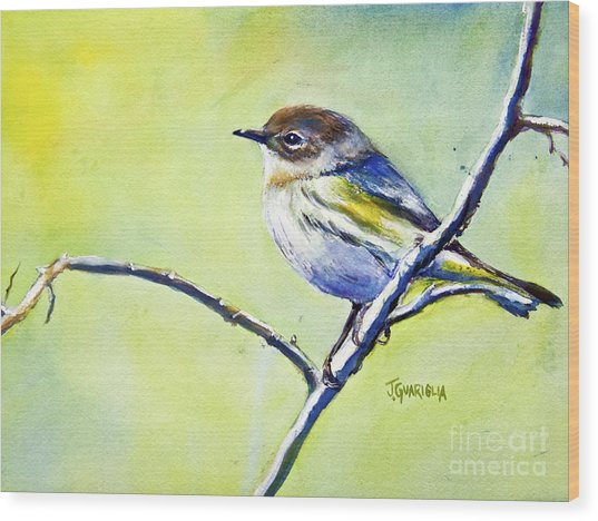 Chickadee Wood Print by Joyce A Guariglia