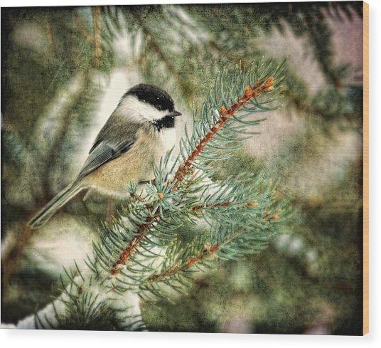 Chickadee On A Snowy Tree Wood Print