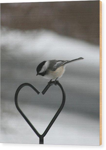 Chickadee On Heart Wood Print by George Jones