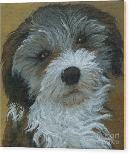 Chico - Dog Portrait Oil Painting Wood Print by Linda Apple
