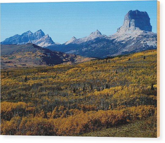 Chief Mountain In The Fall Wood Print