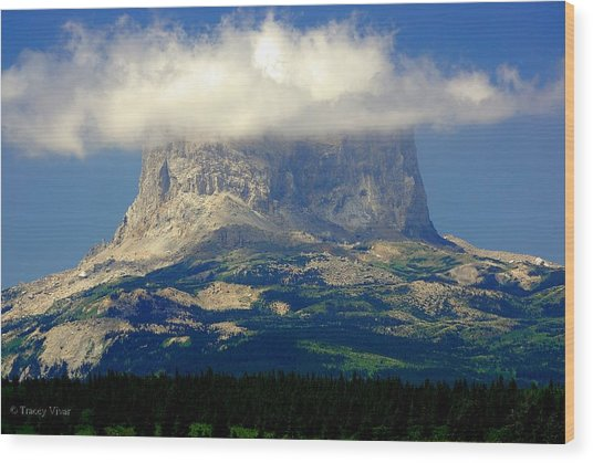 Chief Mountain, With Its Head In The Clouds Wood Print