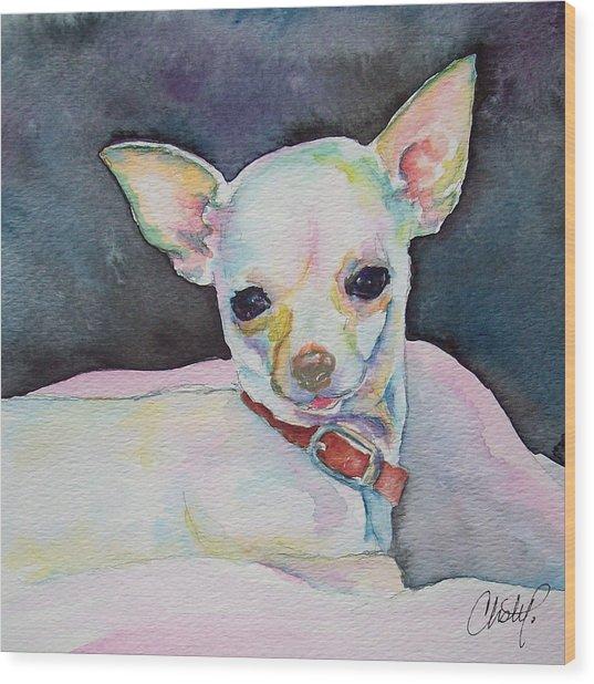 Chihauhau Puppy Wood Print