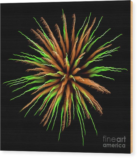 Chihuly Starburst Wood Print