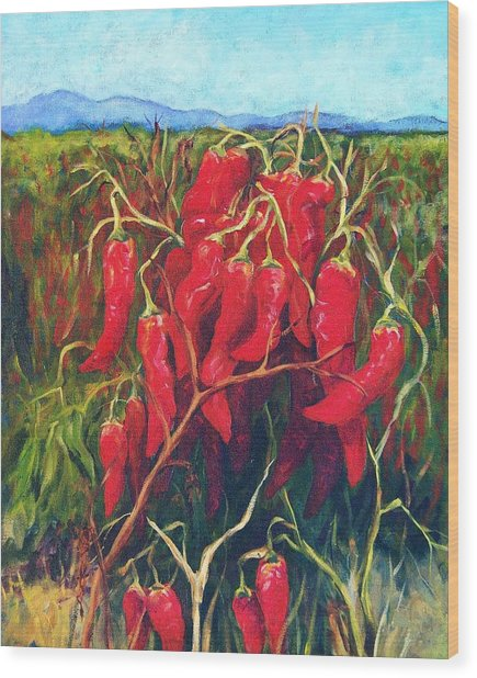 Chile Field Wood Print by Candy Mayer