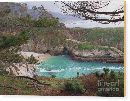 China Cove At Point Lobos Wood Print