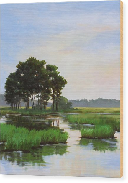 Chincoteague Marsh Wood Print