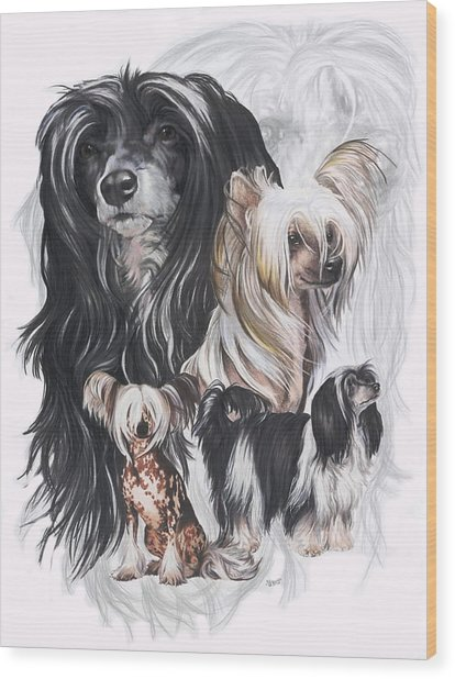 Chinese Crested And Powderpuff Medley Wood Print