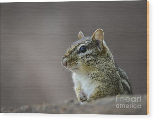 Chipmunk Profile Wood Print