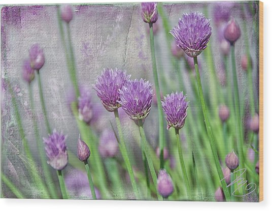 Chives In Texture Wood Print
