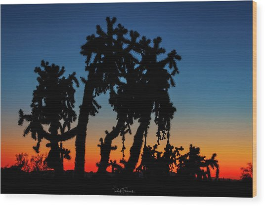 Wood Print featuring the photograph Cholla Silhouettes by Rick Furmanek