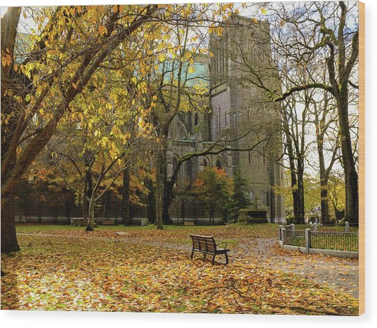 Christchurch Cathedral Wood Print