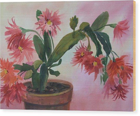 Christmas Cactus Wood Print by Dianna Willman