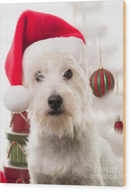 Christmas Elf Dog Wood Print