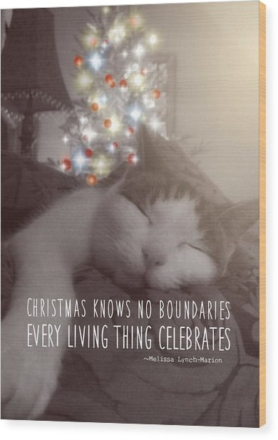 Christmas Nap Quote Wood Print by JAMART Photography