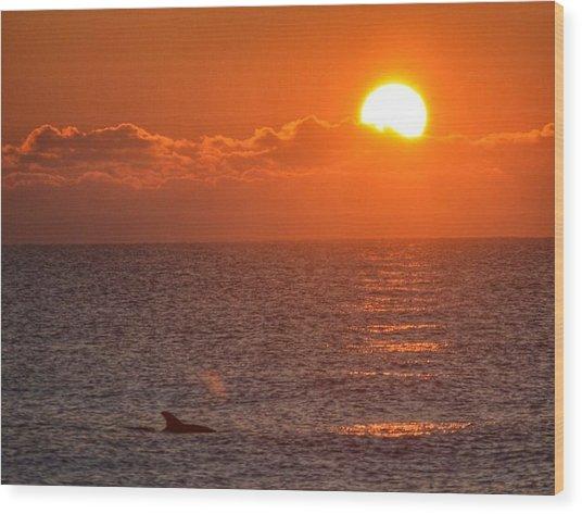 Christmas Sunrise On The Atlantic Ocean Wood Print