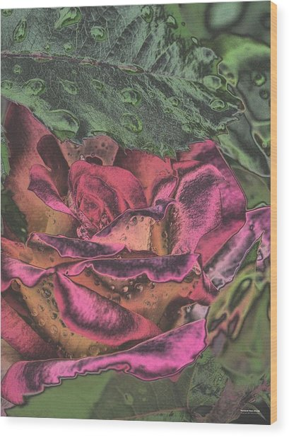 Chrome Rose 64182 Wood Print