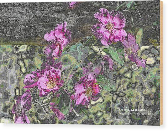 Chrome Roses 2666 Wood Print