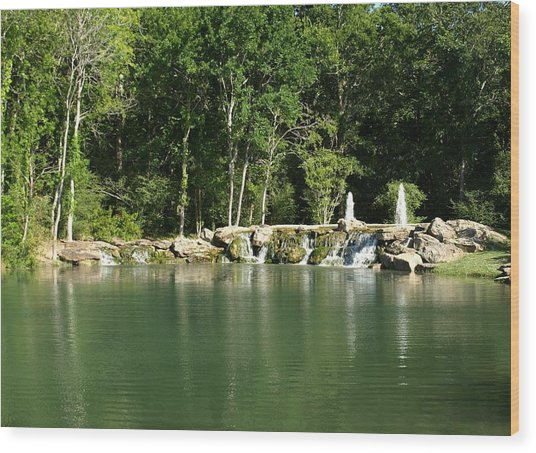 Cinco Ranch Lake Wood Print by Dennis Stein