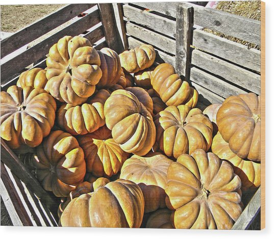 Wood Print featuring the photograph Cinderella Pumpkins by Pacific Northwest Imagery