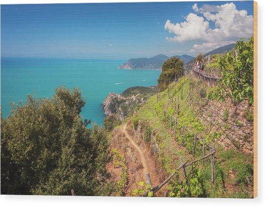 Cinque Terre Italy Vineyard Walk Wood Print