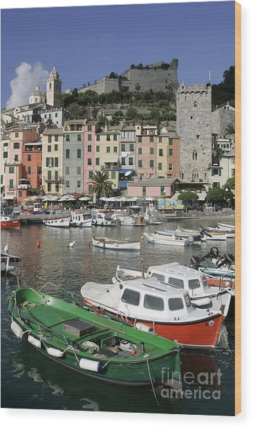 Cinqueterre Boats Wood Print by Stan and Anne Foster
