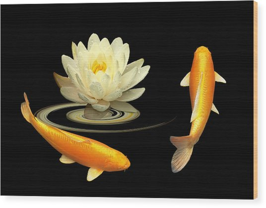 Circle Of Life - Koi Carp With Water Lily Wood Print