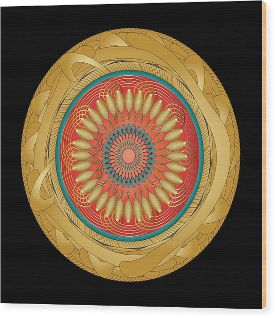 Circularity No 1566 Wood Print