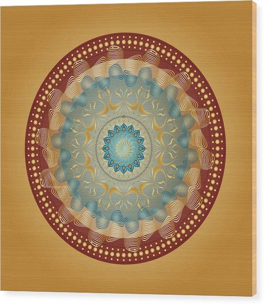 Circularity No 1640 Wood Print
