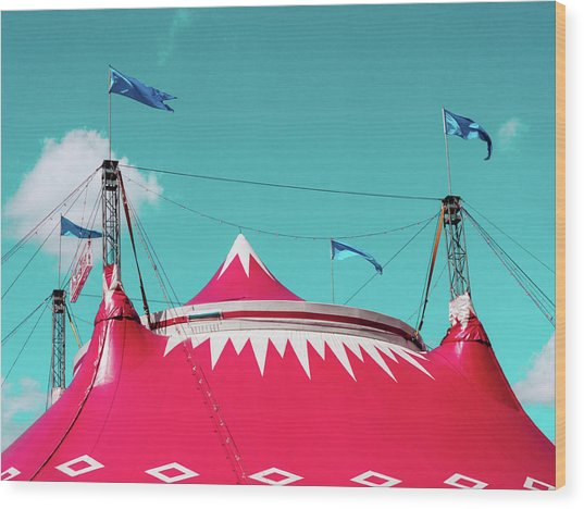 Circus Wood Print by Dylan Murphy