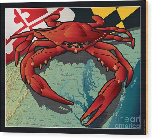 Citizen Crab Of Maryland Wood Print