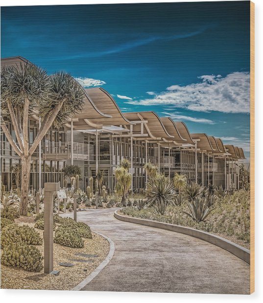 Newport Beach California City Hall Wood Print