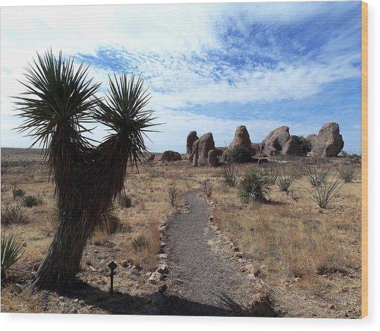 City Of Rocks - New Mexico Wood Print
