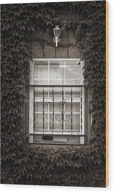 City Window Detail Wood Print