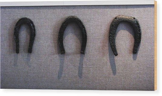 Civil War Horse Shoes Wood Print by Joyce Kimble Smith