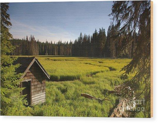 Clackamas Meadow Pump House- 2 Wood Print