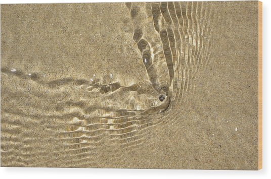 Clams And Ripples Wood Print