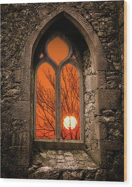 Wood Print featuring the photograph Clare Abbey Sunrise by James Truett