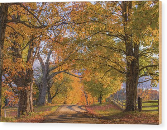 Classic Vermont Fall Wood Print
