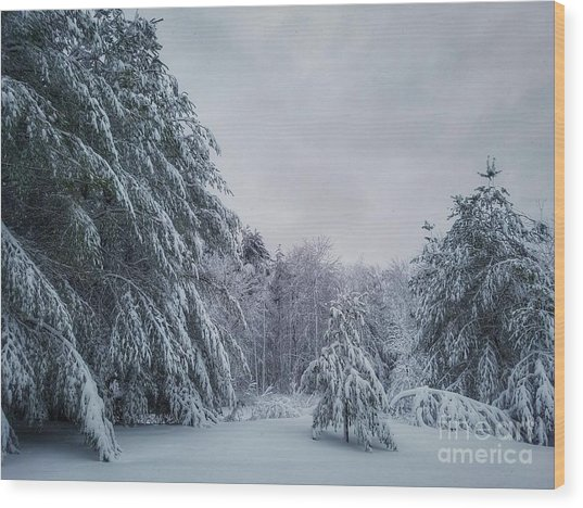 Classic Winter Scene In New England  Wood Print